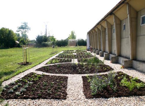 Mulčovanie – Záhrada liečivých  a jedovatých rastlín UKF Nitra